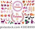 Colorful autumn, set of vector design elements 43838999