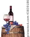wine vine grape 43839186