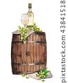 wine vine grape 43841518