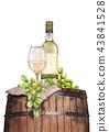 wine vine grape 43841528