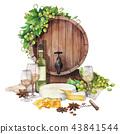 wine grape watercolor 43841544