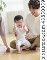 Three authorized families 43850059