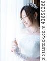 웨딩 드레스 신부 43850268