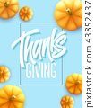 Happy Thanksgiving greeting card. Holiday calligraphy lettering. Pumpkin background. Vector 43852437