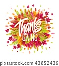 thanksgiving, vector, background 43852439