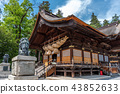 Japanese Temple structure 43852633