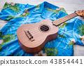 ulkulele and hawaiian shirts 43854441