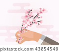 Hand holding colorful branch of cherry blossoms. Vector Illustration 43854549