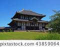 [도다이지 대불전】 나라현 나라시 雑司 도시 43859064