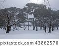 홋카이도 하코다테 고료 카쿠 공원 43862578
