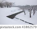 홋카이도 하코다테 고료 카쿠 공원 43862579