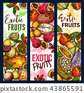 Exotic tropical fruits organic harvest sketch 43865591