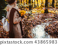Rear view of female holding bouquet of yellow autumn maple leaves in her gloved hands. Ground 43865983