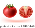 Vector 3d realistic set of red tomatoes 43866446