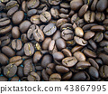 Coffee bean background. 43867995