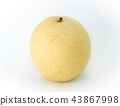Chinese pear isolated on white background. 43867998