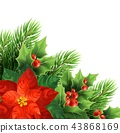 poinsettia, christmas, xmas 43868169