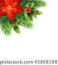 Red poinsettia flower realistic illustration 43868188