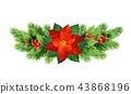 poinsettia, xmas, holly 43868196