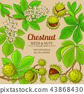 chestnut vector frame 43868430