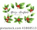 Christmas holly branches realistic illustrations set 43868513