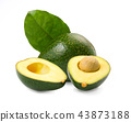 Fresh avocados isolated on white background 43873188