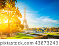 eiffel tour and from Trocadero, Paris 43873243
