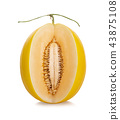 哈密瓜 水果 甜瓜 43875108