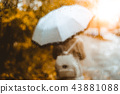 Beautiful golden autumn scene. Watercolor like blurred blond girl with backpack and bright umbrella 43881088