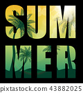 Summer Word from Beautifil Palm Tree Leaf  Silhouette Background Vector Illustration 43882025