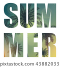 Summer Word from Beautifil Palm Tree Leaf  Silhouette Background Vector Illustration 43882033