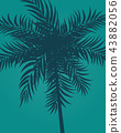 palm, tree, leaf 43882056