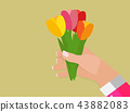 Man's hand holds Spring Tulip Flowers in Flower Pot Vector Illustration 43882083