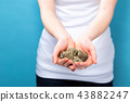 Young woman holding raw gold nuggets 43882247