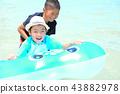 palyful, play, playful 43882978