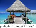 타히티의 하늘과 바다와 꽃과 부두 43885626