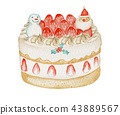 Persimmon short Christmas cake watercolor illustration 43889567