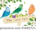 可愛的小鳥框架 43889721