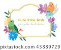 小鳥美好的框架 43889729