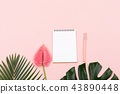 Anthurium flower, tropical leaves, stationery 43890448