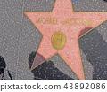 별 모양, 지면, 미국 43892086