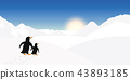 Two penguins look into the distance of a winter landscape 43893185