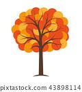 orange and yellow autumn tree 43898114