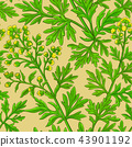 wormwood, vector, pattern 43901192