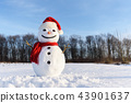 Funny snowman in red hat 43901637