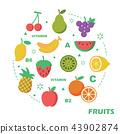 fruit flat design 43902874