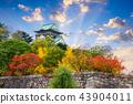 Osaka Castle in Autumn 43904011