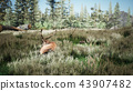 Beautiful sunny nature with animals in early spring. 3D Rendering 43907482
