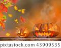 halloween, autumn, pumpkin 43909535