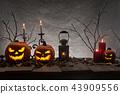 Halloween pumpkins on wooden planks. 43909556